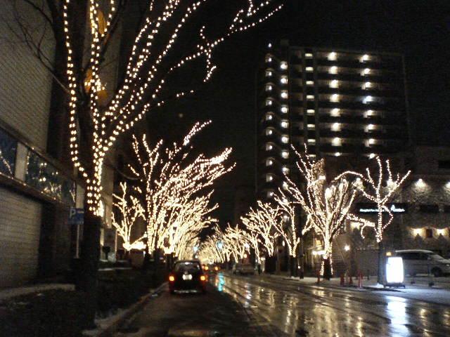 新潟駅南けやき通り